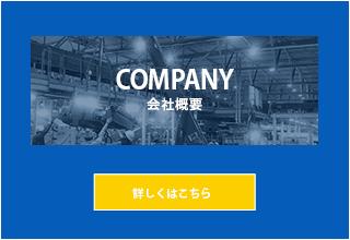 sp_ban_company